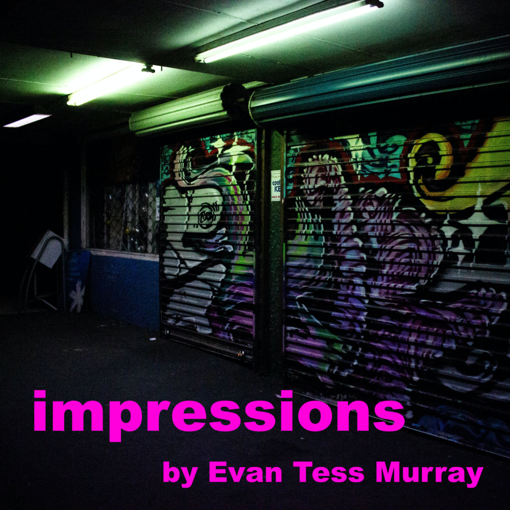 "Photo is of garage doors covered with graffiti; the text over has the title of the episode - ""Impressions,"" by Evan Tess Murray."