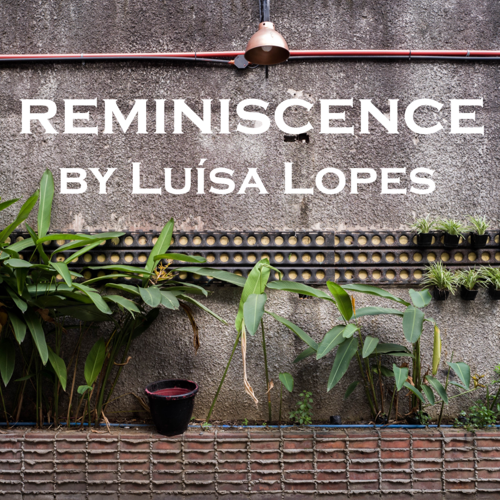 "Photo is of a concrete wall with a light and electrical conduit overhead; a line of planters with various plants below. The title of the episode is superimposed - ""Reminiscence"""